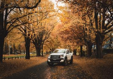 Mẹo bảo trì cho xe Ford vào mùa thu